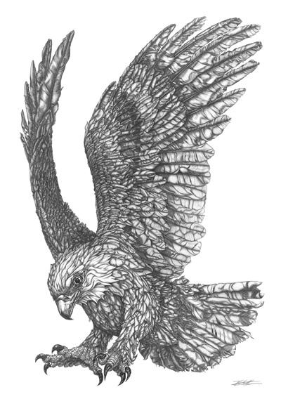eagle-small